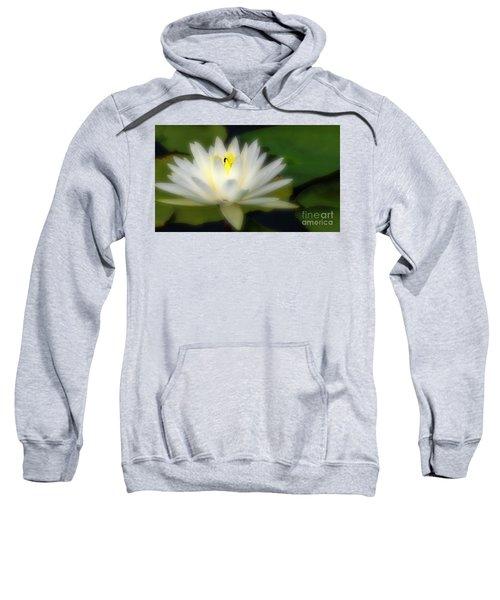 Center Of Attenion Sweatshirt