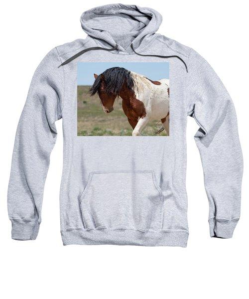 Charger Sweatshirt