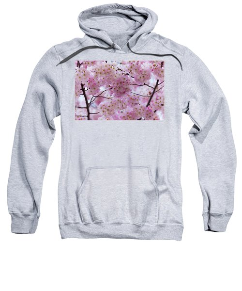 Cherry Blossoms 8625 Sweatshirt