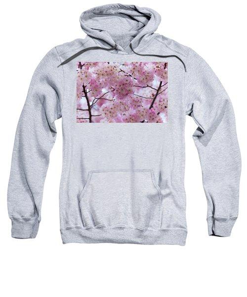 Cherry Blossoms 8625 Sweatshirt