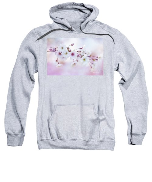 Cherry Blossoms In Pastel Pink Sweatshirt
