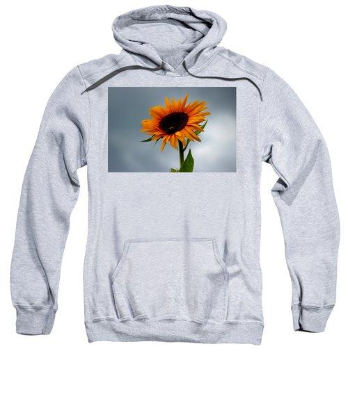 Cloudy Sunflower Sweatshirt