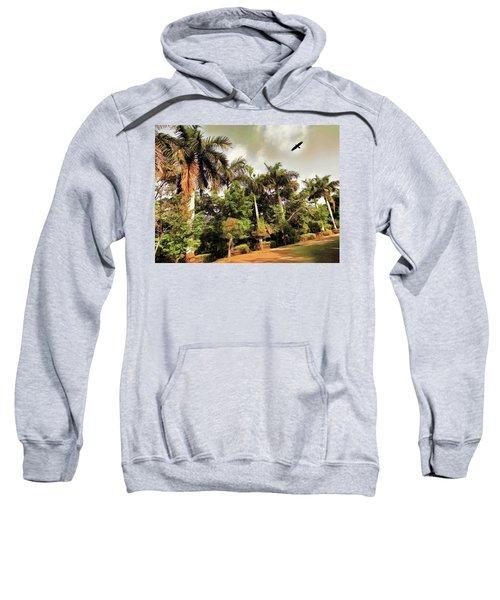 Coconut Trees Sweatshirt