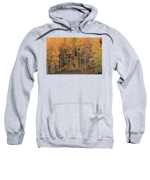 Colorado Guardians Sweatshirt