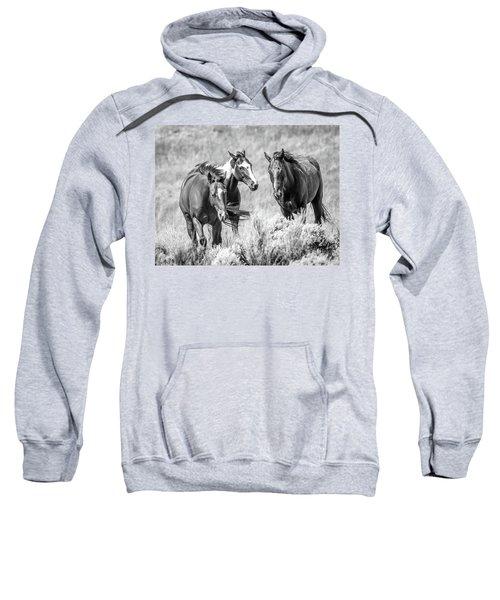 Colorado's Finest  Sweatshirt