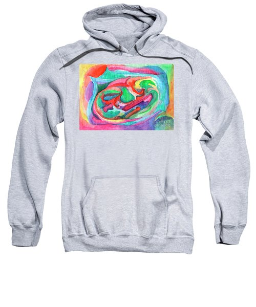 Colorful Abstraction Sweatshirt