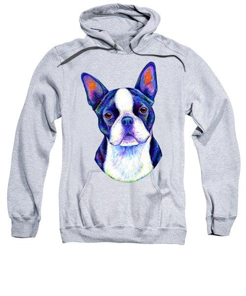 Colorful Boston Terrier Dog Sweatshirt