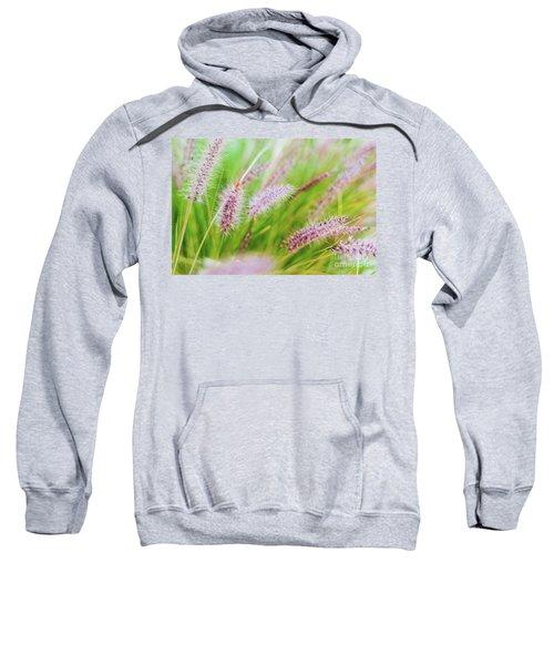 Colorful Flowers In Purple Spikes, Purple Fountain Grass, Close- Sweatshirt