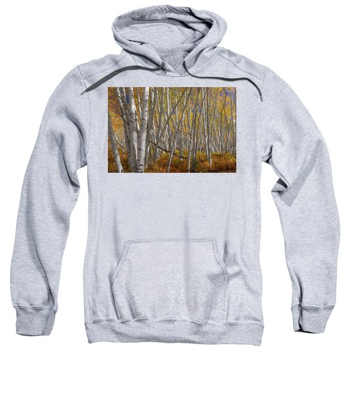 Sweatshirt featuring the photograph Colorful Stick Forest by James BO Insogna