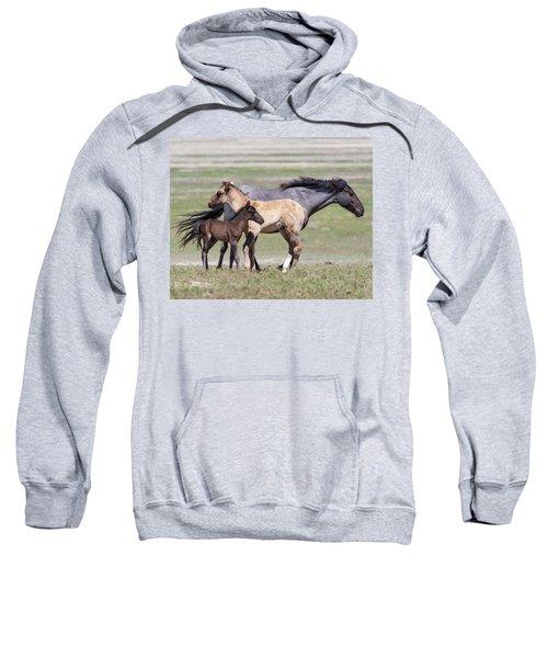 Contrasts Sweatshirt