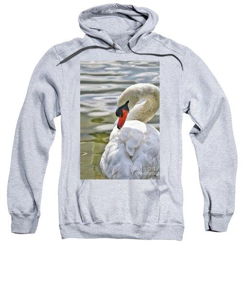 Coy Swan 2 Sweatshirt