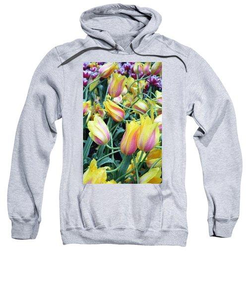 Crazy Tulips Sweatshirt