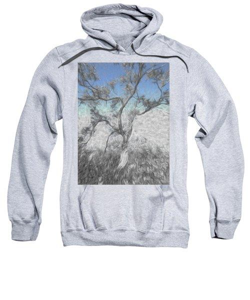 Creeping Up Sweatshirt