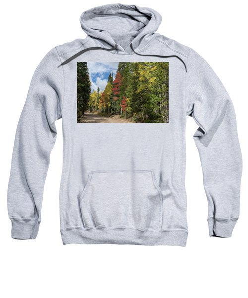 Sweatshirt featuring the photograph Cruising Colorado by James BO Insogna