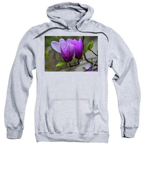 Cuddling In Spring Sweatshirt