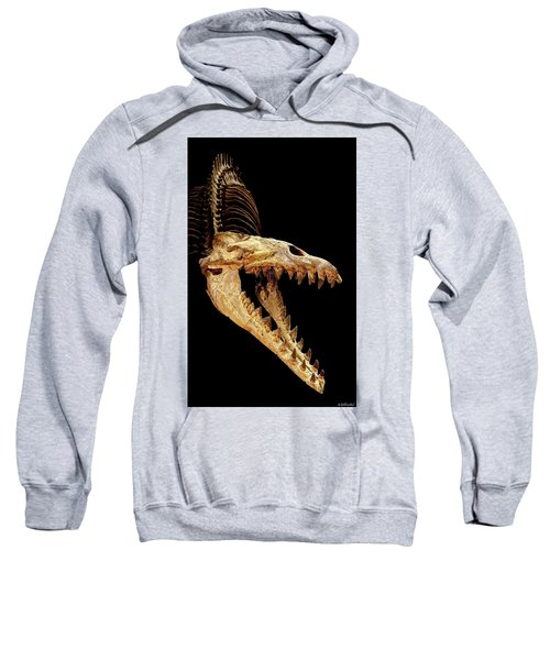 Cynthiacetus Skull In Black Sweatshirt
