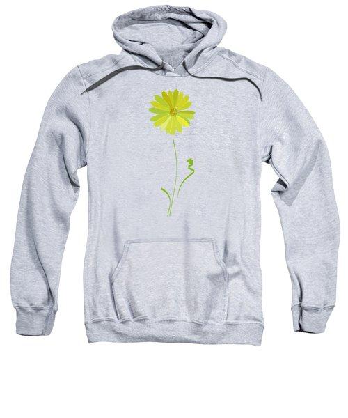 Daisy, Daisy Sweatshirt