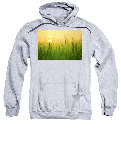Dawn At The Wheat Field Sweatshirt