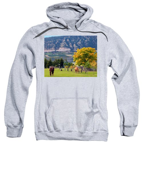 Days Of Autumn 25 Sweatshirt