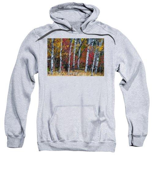 Deep Aspens Sweatshirt