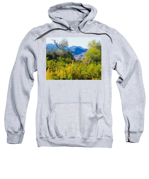 Deep Desert Valley In A Sonoran Desert Spring Sweatshirt