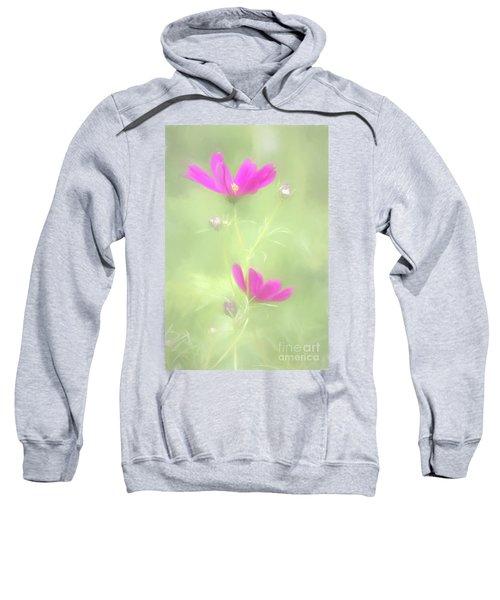 Delicate Painted Cosmos Sweatshirt
