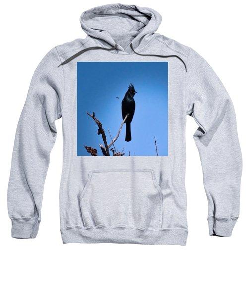 Desert Phainopepla And Dragonfly Sweatshirt