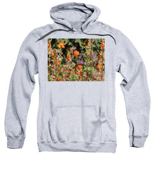 Desert Wildflowers Sweatshirt