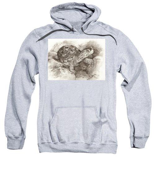 Diamondback Terrapin Sweatshirt