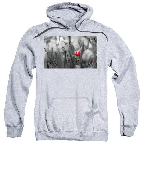 Different Sweatshirt