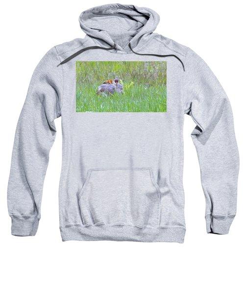 Double Down  Sweatshirt