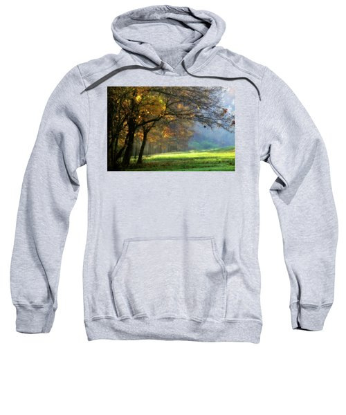 Dreamland Sweatshirt