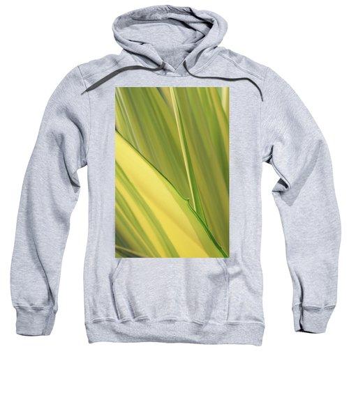 Dreamy Leaves Sweatshirt