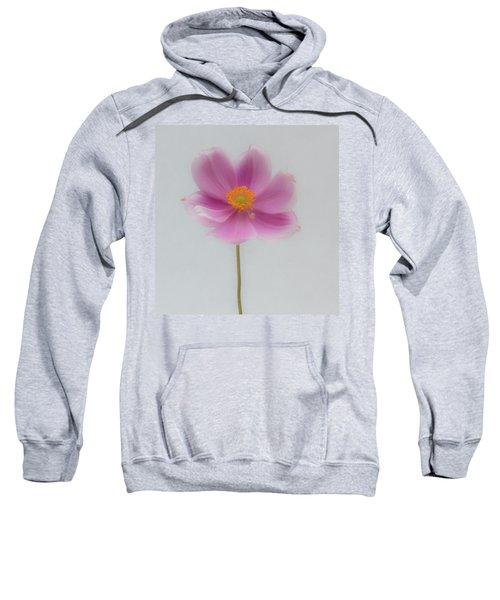 Dreamy Pink Anemone Sweatshirt