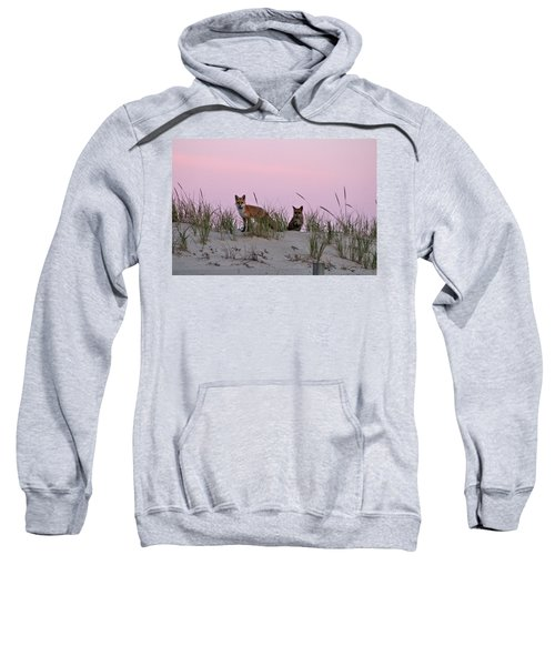 Dune Foxes Sweatshirt