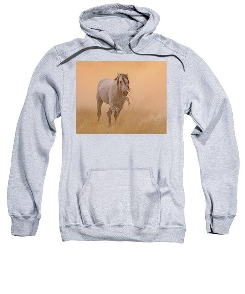 Dusty Evening Sweatshirt