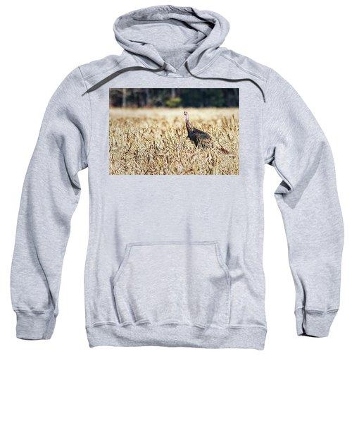 Eastern Wild Turkey Sweatshirt