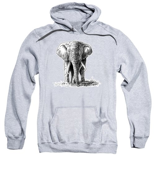 Elephant In The Room Sweatshirt