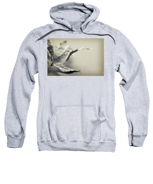 Entranced Sweatshirt