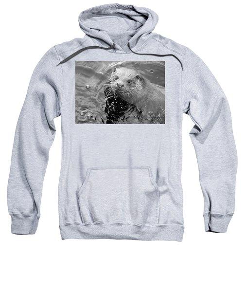 European Otter Sweatshirt