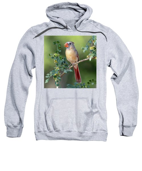 Fabulous Female Cardinal Sweatshirt