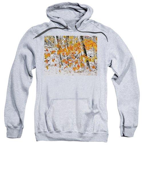 Fall And Snow Sweatshirt