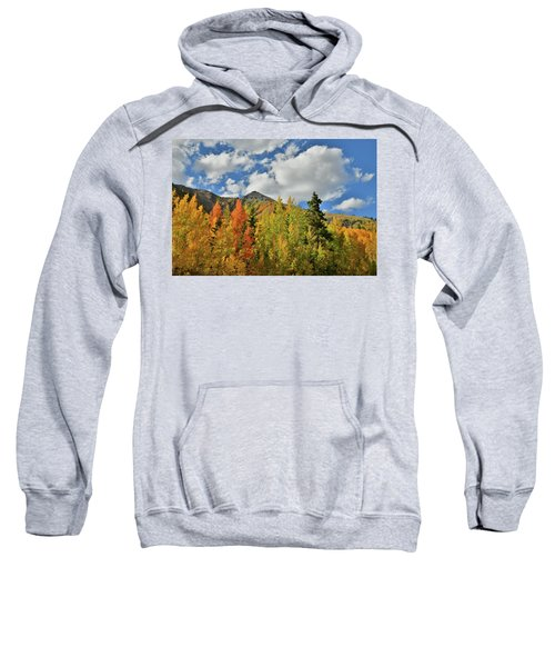 Fall Colored Aspens Bask In Sun At Red Mountain Pass Sweatshirt