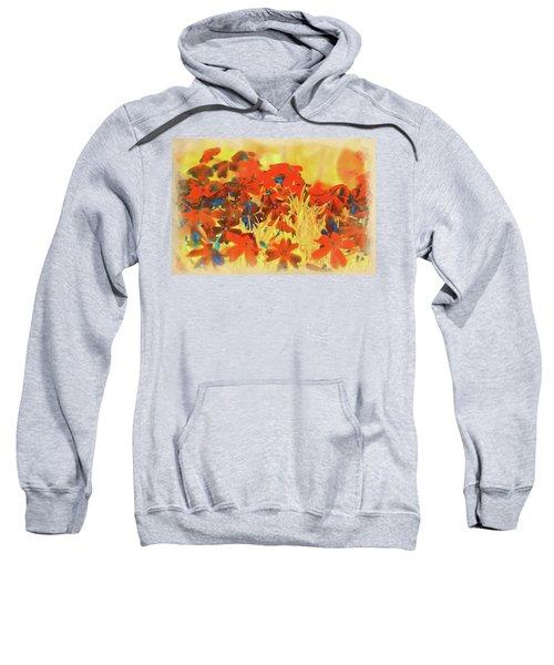 Fall Colors Sweatshirt