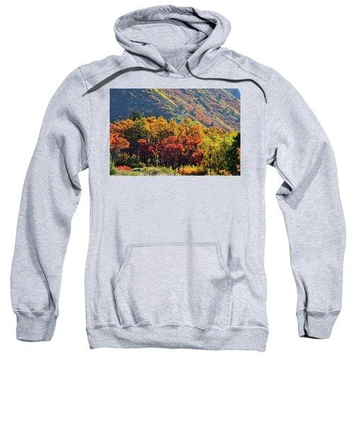 Fall Colors Along Avalanche Creek Road Sweatshirt