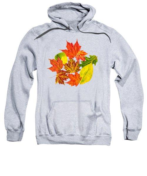 Fall Leaves Pattern Sweatshirt