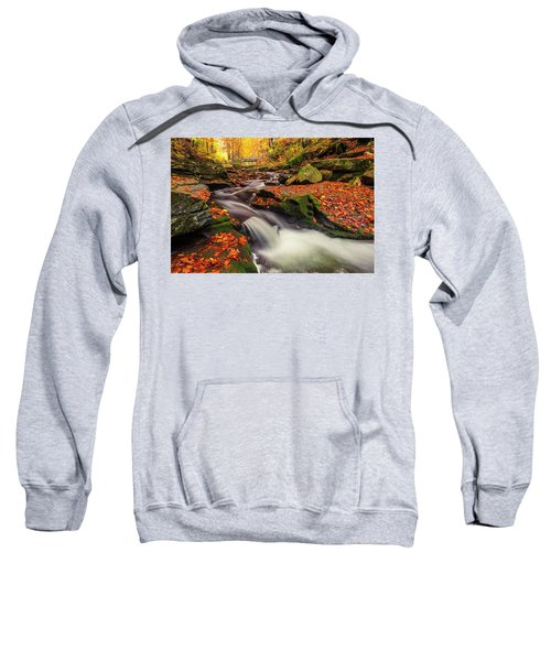 Sweatshirt featuring the photograph Fall Power by Evgeni Dinev