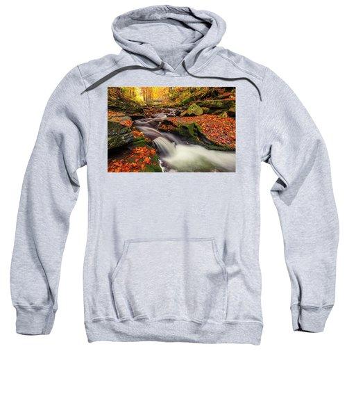 Fall Power Sweatshirt