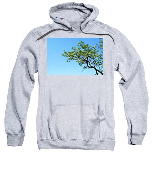 Far Reaching Sweatshirt