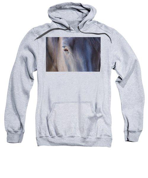 Fenced Foal Sweatshirt